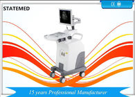 Full Digital Mobile Ultrasound Scanner B/W High Elements For Human CE Certification